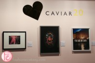 interior design show 2016 caviar 20