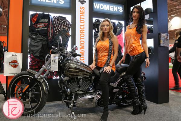 Automobiles & Bikes