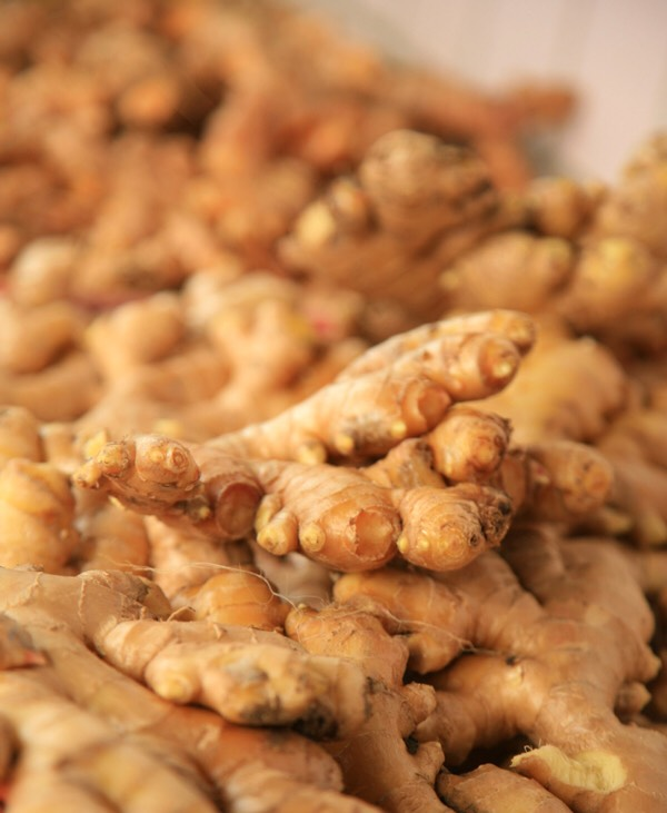木漿竹薑茶包使用心得 ginger tea review and health benefits