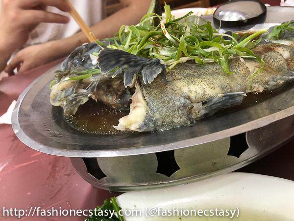 萬里漁港漁村海鮮餐廳 清蒸石斑魚 Wan Li Yeliu Fishing Harbour Seafood