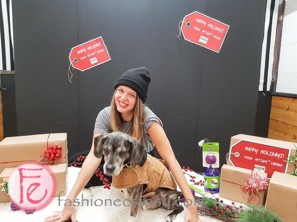Jingle Woof PetSafe holiday gift guide