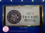 """""""Not a F****ing Musical"""" - Four Chords and a Gun - play about the Ramones band"""