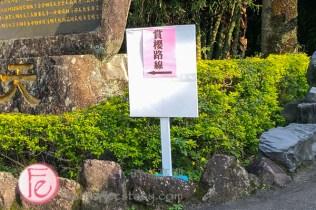 淡水天元宮賞櫻攻略2020 - Tianyuan Temple Tamsui sakura cherry blossom guide and review-10