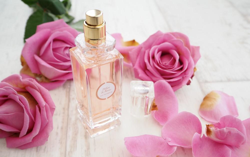 Buy Fresh Lotus Flowers