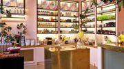 lush cosmetics' business