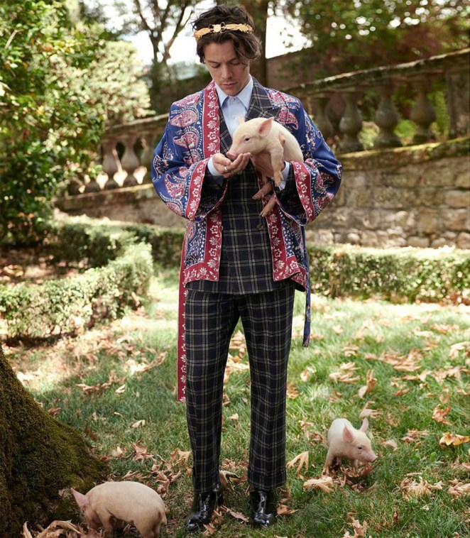 Image result for harry styles gucci campaign
