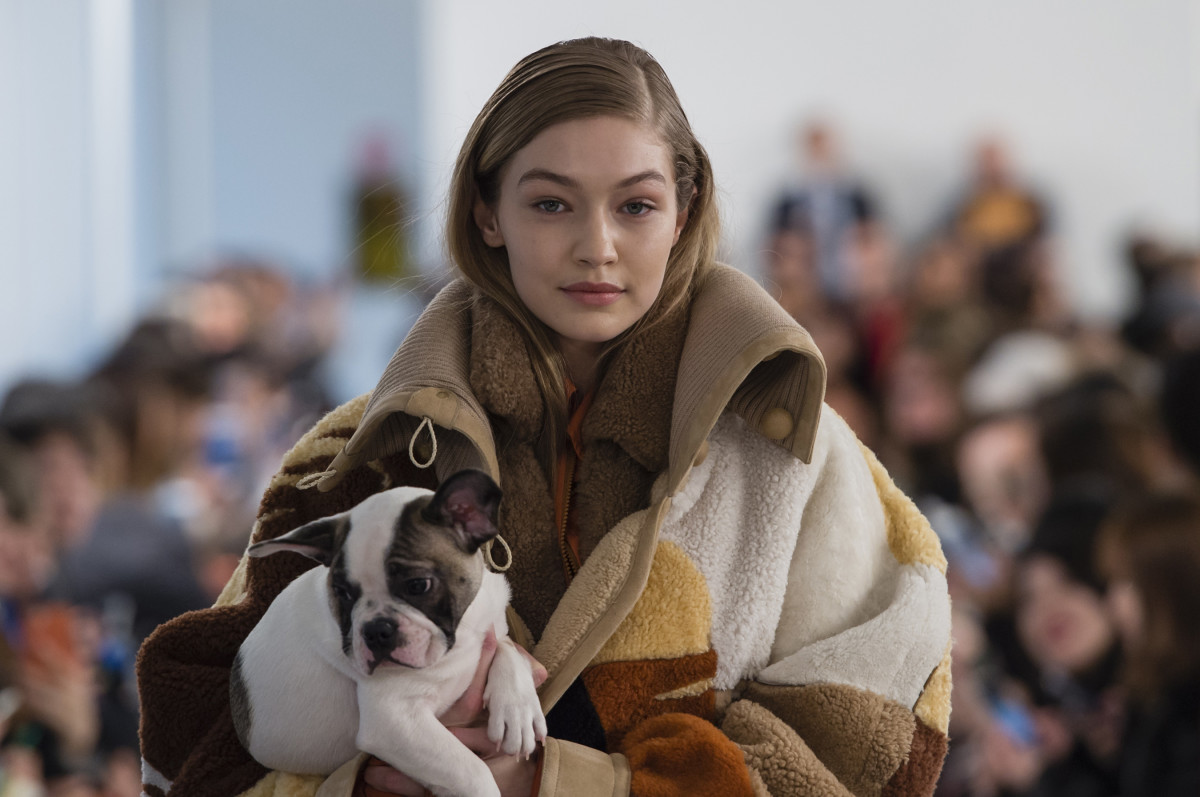Puppies And Fall Wallpaper Live Puppies Were The Real Stars Of Tod S Fall 2018