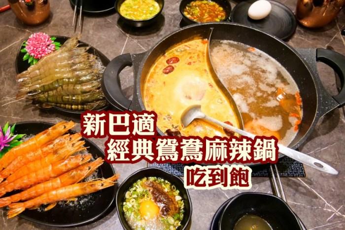 澎湖美食🔸新巴適麻辣鍋  大胃王選這間 超高cp值 肋眼牛排 天使紅蝦吃到飽