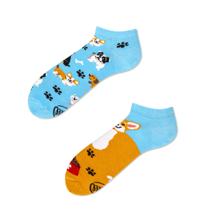 Playful Dog Low Socks