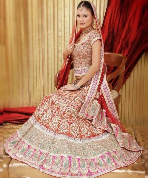 Pakistani Wedding Dresses 2014 For Bridal Pakistani Wedding Dresses 2014 For Bridal Pakistani Wedding Dresses 2014 For Bridal Pakistani Wedding Dresses 2014 For Bridal
