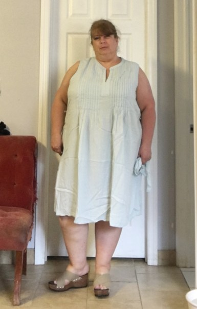 chambray dress 1