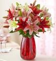 Taurus: Oriental Lilies