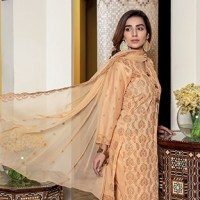 Meraki Chikankari Spring Summer Lawn Collection 2020 by Riaz Arts Buy Online