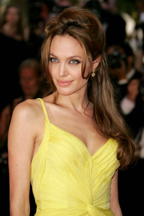 Angelina Jolie actress long hairstyle (2)
