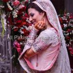 Famous Fashion Model ZAHID TAIMOOR wedding waleema pictures (2)