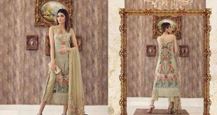 Noor Festive Collection Saadia Asad Dresses 2017