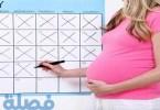 كيفية حساب فترة الحمل