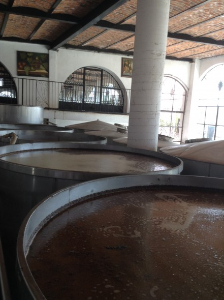 Tequila fermenting in huge steel vats - the bubbles rotates the tequila strongly!