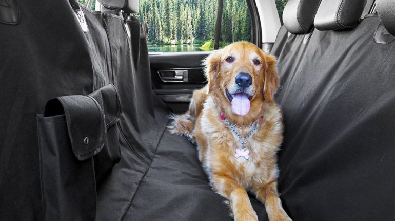 Car Accessories Pet Seat water proof