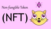 What is an NFT ( Non Fungible Tokens )?