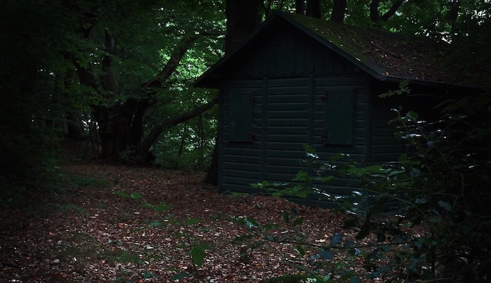 home_hut_forest_hunting_house_gloomy_creepy_crime_scene_dark-918623