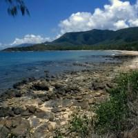 World's Oldest Tropical Rainforest Handed Back To Original Indigenous Custodians; Henrietta McFarlane; Impakter