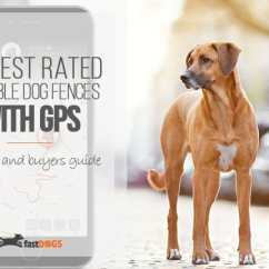 Invisible Fence Gps Hsh Pickup Wiring Diagram Best Wireless Dog Reviews Fast Dogs Top Rated With