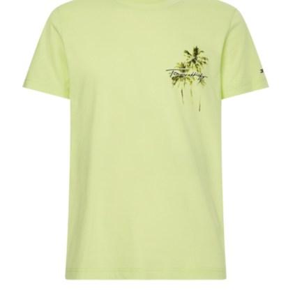 Palm Box Print Shirt Men