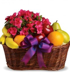 Fruit Basket With Potted Flowers
