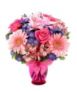 Gerbera Daisy Celebration Flower Bouquet