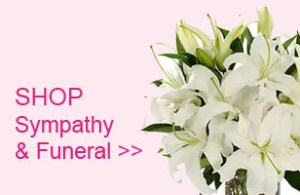 Shop Sympathy Funeral Flowers Gift Baskets