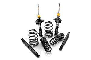 Eibach Pro-System Suspension Kit: Dodge Charger 2006
