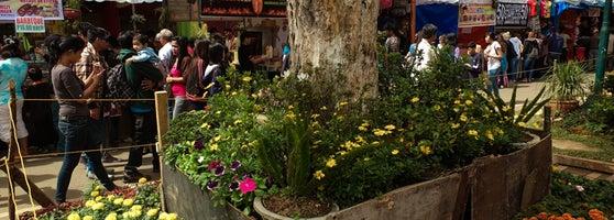 Baguio City Shoes Night Market