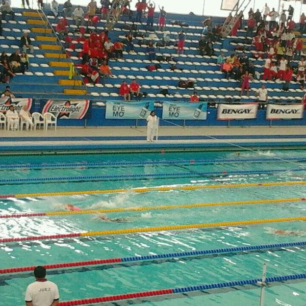 Piscina Olimpica Campo De Marte  Atletismo y Deportes en Lima