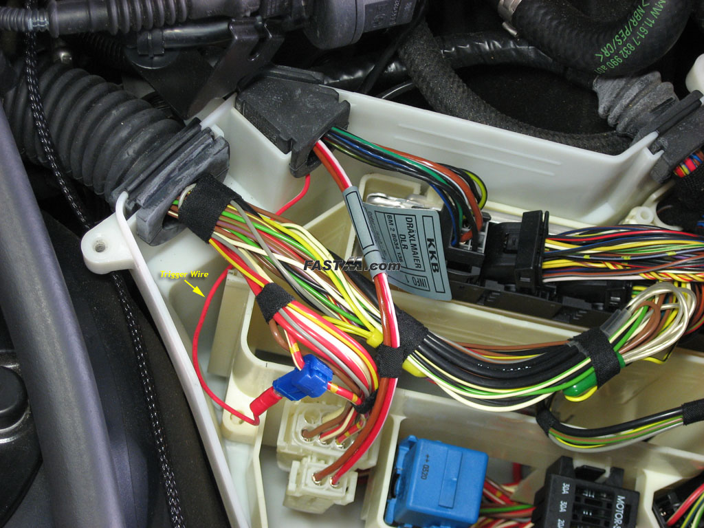 e46 light control module wiring diagram stihl fs 55 carburetor umnitza predator orion v2 angel eyes bmw 3 series diy