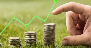 Fixed Deposit Interest Rate - Can Tax-saving Fd Be Torn Down Before Maturity Learn All About It_Pic Credit Google