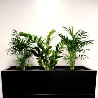 Super Strong Planter Box, Black