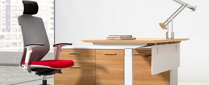Director-Executive-Electric-Height-Adjustable-Desk