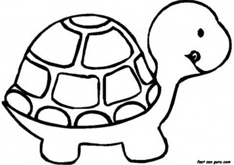 print out baby turtle