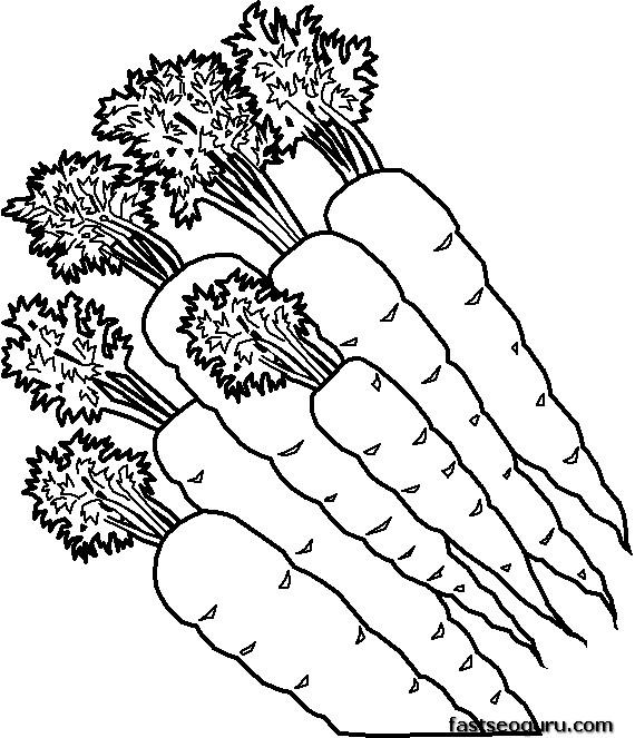Girls Corn Wallpaper Printable Vegetable Carrots Coloring Page Printable