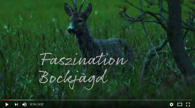 Faszination Bockjagd | Ein Video von Frankonia