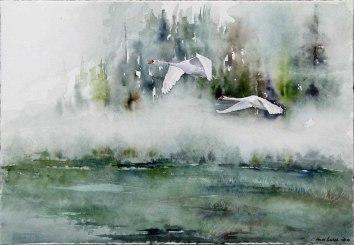 Start in den neuen Tag (c) ein Schwanen Aquarell von Hanka Koebsch