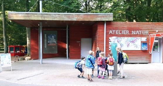 Atelier Natur im Rostocker Zoo – Ort der aktuellen Ausstellung unserer Aquarelle (c) FRank Koebsch