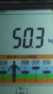 1008体重