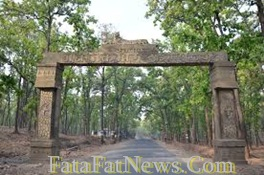 achanakmar wildlife sanctuary 3 bilaspur chhattisgarh