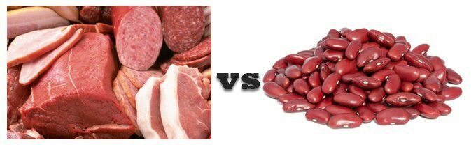 Is Plant Protein Better For You Than Animal Protein