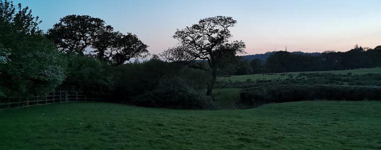 Thornhill Top Loop (Reverse)