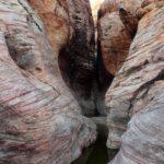 Toad Pool Canyon (Nevada, USA)
