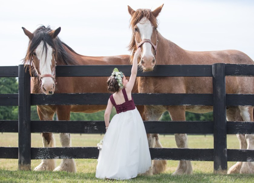 Flower girl with the horses