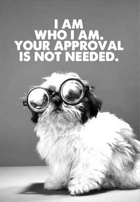 Black & White picture of a dog wearing silly glasses. Quote says I am who I am. Your Approval is not needed.